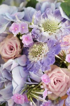 scabiosa purple bouquet