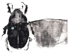 Andrew Myers - another of my insect monotype prints
