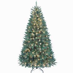 Kurt Adler Pre-Lit Point Pine Tree, 7-Feet - http://www.christmasshack.com/christmas-trees/pre-lit-christmas-trees/kurt-adler-pre-lit-point-pine-tree-7-feet/