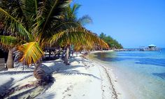 Isla Marisol Resort - Glover's Reef Atoll, Belize: 4- or 7-Night Stay in a Cabana for Two with Meals and Daily Activity Packages at Isla Marisol Resort in Belize
