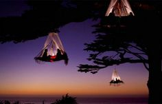 Portaledge tree camping. This photo was taken near the Bavarian town of Pfronten, Germany, where an adventure mountain resort called Waldseilgarten offers guests a thrilling night of tree camping in the wilderness.