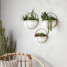 Isley Modern Wall Planters (Set of - N/A, Gold(Metal)You can find Wall planters and more on our website.Isley Modern Wall Planters (Set of - N/A, Gold(Metal) Metal Wall Planters, White Planters, Decorative Planters, Outdoor Wall Planters, Wall Mounted Planters Indoor, Concrete Planters, Succulent Wall Planter, Succulent Care, Cheap Planters