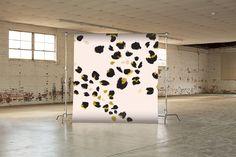 Seamless Paper Backdrop : Kitten