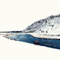 Mountain Vagabond : Photo