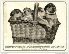 Original-Werbung/Inserat/ Anzeige 1913 - NETTEL CAMERAS/HAUFF PLATTEN/NETTEL CAMERAWERK FEUERBACH ca. 140 x 110 mm