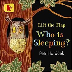 Who is Sleeping? book review