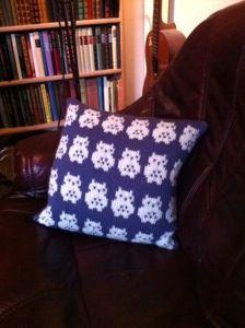 Ugleputa Hedvig / Hedwig the pillowcase