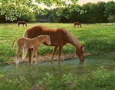 A925726481:Summer Day-Horse Painting by Persis Clayton Weirs