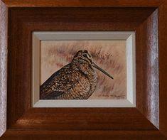 Original British Bird Paintings For Sale - Alan M Hunt - Woodcock Study - Acrylic - 7 x - Framed - Price Bird Paintings, Paintings For Sale, Photorealism, Wildlife Art, Bird Prints, Bird Art, Natural World, Cool Pictures, British