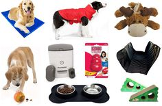 Get a jump on your holiday shopping with these 10 pet products Amazon is discounting up to 68 percent before Black Friday.