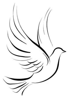Dove Tattoos, Celtic Tattoos, Small Tattoos, Art Drawings Sketches, Easy Drawings, Colombe Tattoo, Stencil Animal, Line Drawing, Painting & Drawing