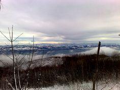winter sight