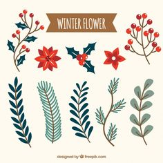 : Collection of winter flower Free Vector Christmas Doodles, Diy Christmas Cards, Xmas Cards, Christmas Art, Holiday Cards, Christmas Holidays, Christmas Decorations, Illustration Noel, Winter Illustration