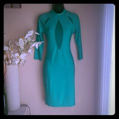 SEXY Jade Green Bodycon Dress, Sheer Cutouts Urbanog.com banging green dress, long sleeve, knee length with see through mesh along the cleavage area and collar bone. I wore it once with red lipstick and leopard print shoes and clutch. Juniors medium, will also fit a large. Zips up in the back, lots of stretch. urbanog.com Dresses
