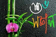 Good Morning Happy Sunday, Good Morning Images Download, Good Morning Messages, Good Morning Wishes, Good Morning Quotes, Happy Valentines Message, Valentine Messages, Morning Pictures, Jada