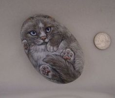 Original-Hand-Painted-Cat-on-Back-Silver-Gray-Ragdoll-Collectible-Art-Rock-Stone