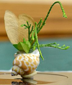 "Use a sea shell and maple seed ""helicopters"" in a miniature floral design."