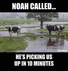 All this rain makes it so hard to get anything planted or any field work done. God knows what we need, we just have to keep faith that HE will provide a way! GOD IS GOOD! Hard To Get, God Is Good, My Passion, Farm Life, Daily Quotes, Make Me Smile, I Laughed, At Least, Faith