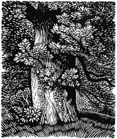 Reynolds Stone (English, 1909-1979). (wood engraving)
