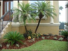 Florida Landscaping Ideas For Backyard bromeliads make a beautiful lower story most bromeliads require frequent water love humidity and backyard pool landscapingflorida Find This Pin And More On Landscapegarden