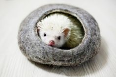 Small animal cave - Hedgehog bonding pouch - Hamster house - Ferret bedding - Felted cave