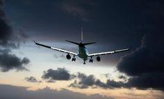 🦒 🐩 Voyager Avec Des Animaux 🐘 🦩 – Tsilemewa™ Air France, Emirates Cabin Crew, Paris New York, Dubai Travel, Great Hotel, Online Travel, Canon Powershot, Air Travel, Travel Tips