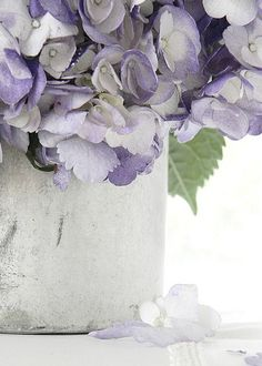 pretty purple hydrangeas, love this vignette