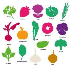 July Gardening Guide | Tui Garden