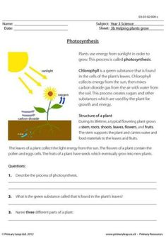 Photosynthesis Worksheets for Kids. 20 Photosynthesis Worksheets for Kids. Synthesis Facts Information & Worksheets for Kids Ks2 Science, 4th Grade Science, Plant Science, Middle School Science, Science Classroom, Physical Science, Earth Science, Science Fun, Teaching Science