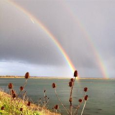 "Howard Hurd on Twitter: ""@BBCSouthWeather @metoffice lovely vivid rainbow over #langstoneharbour from #portsmouth this afternoon http://t.co/gz76IxAG3d"""