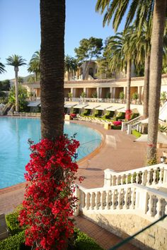 The most gorgeous pool ever at Resort at Pelican Hill Newport coast California