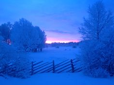 Blue moment in Lapland. Shhhh...