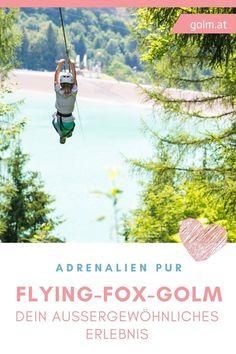 Hast du den erforderlichen Mumm, um dein nächstes Tagesausflugsziel zum Flying-Fox-Golm zu planen? Dort, wo andere Wandern, wirst du einzigartig Erlebnisse machen. In Mitten der einzigartigen Natur von Österreich kannst du den Adrenalin-Schub deines Lebens haben! Mountains, Nature, Travel, Viajes, Summer Days, Hiking Trails, Naturaleza, Destinations, Traveling