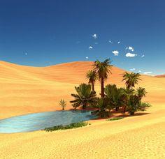 Afbeeldingsresultaat voor oase desert