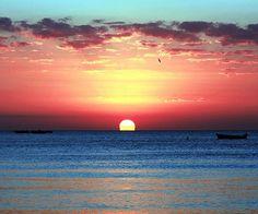 sunset - zzkko.com