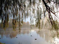 Queanbeyan River NSW - GOD666, via Flickr
