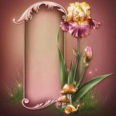 """Barnali Bagchi ~ """"Iris Dreams."""""""