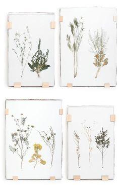 pretty pressed flowers wall art DIY Inspiration