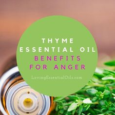 Thyme Essential Oil Conquers Anger: Have you ever gotten angry in a situation? Maybe your temper showed your frustration? White Fir Essential Oil, Peppermint Essential Oil Uses, Thyme Essential Oil, Essential Oil Safety, Essential Oils For Kids, Essential Oils Cleaning, Young Living Essential Oils, Essential Oil Blends, Oils For Energy