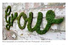 This is awesome! Grow moss on your outdoor wall into whatever shape you like - amazing vertical garden. Sourced: My Urban Garden Deco Guide