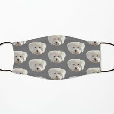 Iphone Wallet, Iphone Cases, Animal Faces, Mask For Kids, Cool Photos, Cool Designs, Dog Cat, My Arts, Pouch