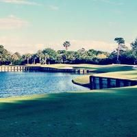 The Loxahatchee Club, in Jupiter, Fla., designed by Jack Nicklaus.