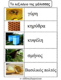 Το λεξιλόγιο της ΜΕΛΙΣΣΑΣ - Καρτέλες Ανάγνωσης & Γραφής ~ Los Niños