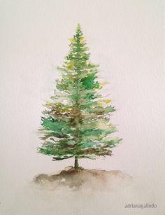 Pinheiro, arvore 5 / Pine tree, n. 5,  aquarela / watercolor 21 x 15 cm - 40 trees project By Adriana Galindo - drigalindo1@gmail.com