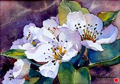 """Cherry Blossoms by Yvonne Hemingway Watercolor ~ 8"""" x 10"""" Framed"""