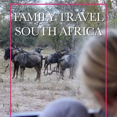 Family Life, Friends Family, Family Holiday, Family Travel, South Africa, Traveling By Yourself, Holidays, Family Trips, Holidays Events