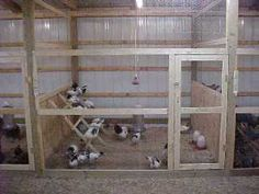 coops inside barn - the roosting rack flips up so that the cage can be easily cleaned.Chicken coops inside barn - the roosting rack flips up so that the cage can be easily cleaned. Chicken Barn, Chicken Coup, Chicken Cages, Best Chicken Coop, Backyard Chicken Coops, Chicken Coop Plans, Building A Chicken Coop, Chickens Backyard, Inside Chicken Coop