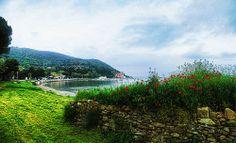 Morning Baratti   #TuscanyAgriturismoGiratola