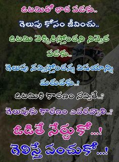Best Quotes, Life Quotes, Wishes Messages, Inspirational Message, Telugu, Attitude, Motivational, Butterfly, Quotes About Life