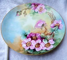 Exquisite 1900s Limoges France Hand Painted Vibrant Red & Pink Wild Roses 9-1/2 Plate